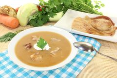 Fresh Duck soup Royalty Free Stock Images