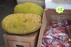 Fresh durian Royalty Free Stock Photos