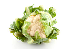 Fresh dutch Cauliflower Stock Image
