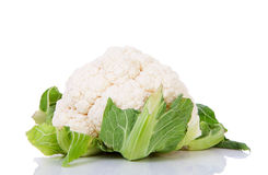 Fresh dutch Cauliflower Stock Photos