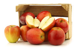 Fresh Dutch Jazz apples and a cut one Royalty Free Stock Images