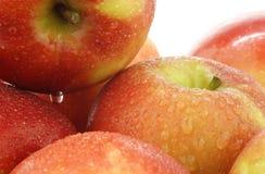 Fresh Dutch Jazz apples Royalty Free Stock Image
