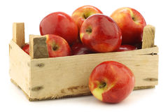 Fresh Dutch Jazz apples in a wooden crate Royalty Free Stock Photography