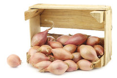 Fresh dutch shallots in a wooden box Royalty Free Stock Images