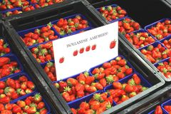 Fresh Dutch strawberries at the greengrocery, Netherlands. Fresh Dutch strawberries for sale at the greengrocery at the market, Netherlands Royalty Free Stock Images