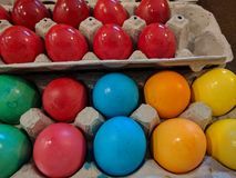 Fresh dyed easter eggs in multiple colors Royalty Free Stock Image
