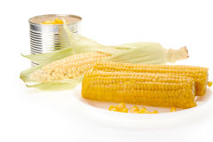 Fresh ear of corn and canned corns Stock Photo