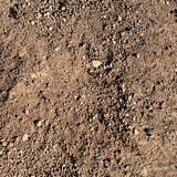 Fresh earth as background Stock Images