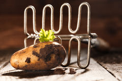 Fresh earthy farm potato and masher Royalty Free Stock Photos