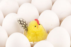 Fresh easter eggs with surprise Royalty Free Stock Photo