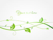 Fresh ecological background with green tree Stock Images