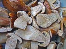 Fresh edible boletus heap, environment details, Royalty Free Stock Photos