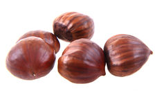 Fresh edible chestnuts. Isolated on the white background Stock Images