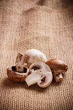 Fresh edible mushroom Royalty Free Stock Photos