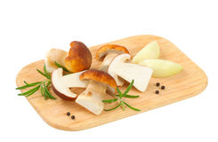 Fresh edible mushrooms Royalty Free Stock Images
