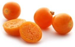 Fresh edible physalis Stock Image