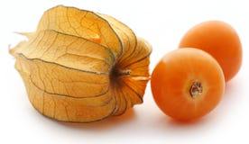 Fresh edible physalis Royalty Free Stock Images