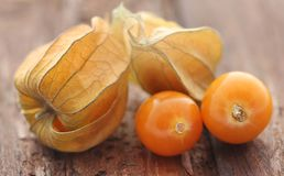 Fresh edible physalis. On natural surface Stock Photography