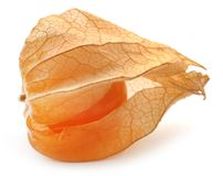 Fresh edible physalis. Over white background Stock Images