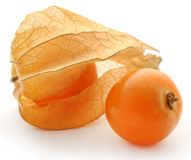 Fresh edible physalis. Over white background Royalty Free Stock Photography