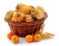 Fresh edible physalis. Over white background Stock Photography