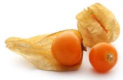 Fresh edible physalis. Over white background Royalty Free Stock Photos