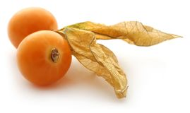 Fresh edible physalis. Over white background Royalty Free Stock Photo