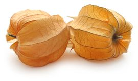 Fresh edible physalis. Over white background Royalty Free Stock Image