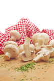 Fresh edible Portabello Mushroom Champignon and Parsley Stock Image