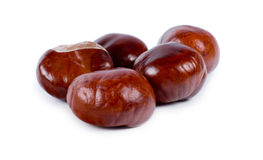 Fresh edible whole sweet chestnuts Royalty Free Stock Image