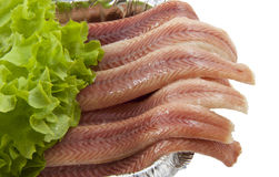 Fresh eel. With salad in a aluminium box on a white background Stock Image