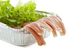 Fresh eel Royalty Free Stock Image