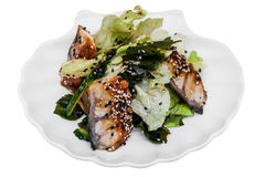 Fresh eel sashimi salad on a plate Royalty Free Stock Images