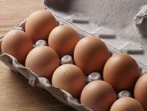 Fresh egg. Stock Image