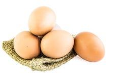 Fresh Egg Royalty Free Stock Images