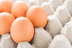 Fresh egg. Good for health Royalty Free Stock Images