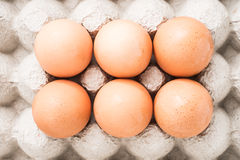 Fresh egg. Good for health Royalty Free Stock Image