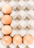 Fresh egg Royalty Free Stock Photos