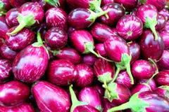 Fresh egg-plant at market stall Royalty Free Stock Image