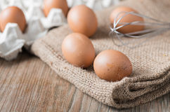 Fresh egg Stock Photography