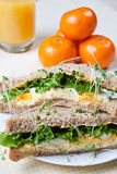 Fresh egg and salad sandwich Royalty Free Stock Photos
