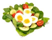 Fresh Egg And Tomato Salad Bowl Stock Photo