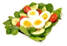 Fresh Egg And Tomato Salad Bowl Royalty Free Stock Photos