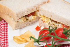 Fresh egg and tomato on white sandwich in rustic kitchen setting Stock Photography