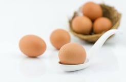 Fresh egg on white spoon isolated on white background Stock Photos
