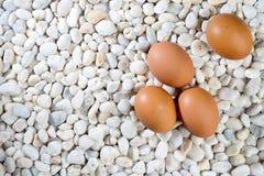 fresh egg on the white stone Stock Photo
