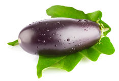 Fresh eggplant  with green leaf Stock Photos