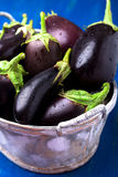 Fresh eggplant in grey basket on blue wooden table.Rustic background. Close up. Vegan vegetable. Stock Photography