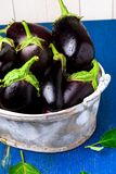 Fresh eggplant in grey basket on blue wooden table.Rustic background. Close up. Vegan vegetable. Royalty Free Stock Images