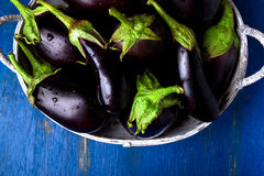 Fresh eggplant in grey basket on blue wooden table.Rustic background. Top view. Copy space. Vegan vegetable. Royalty Free Stock Image